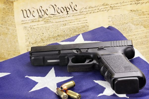2nd ammendment rights for felons